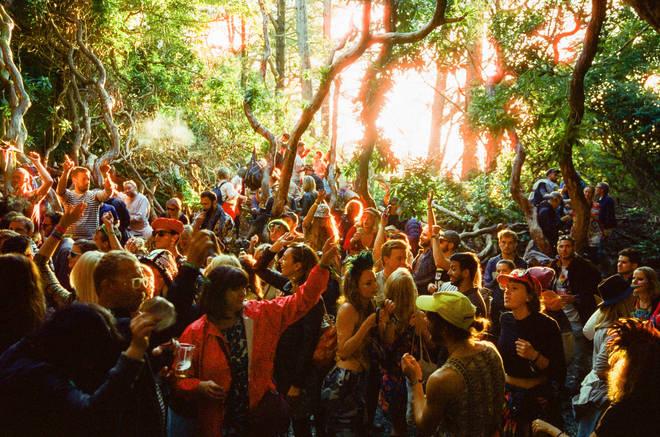 Festival No.6 woodland image