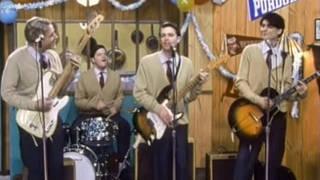 Weezer - Buddy Holly video