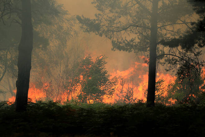 A heath fire rages behind the tenth tee area that caused play to be suspended during day three of The Rose Ladies Series on The West Course at Wentworth Golf Club, 7 August 2020