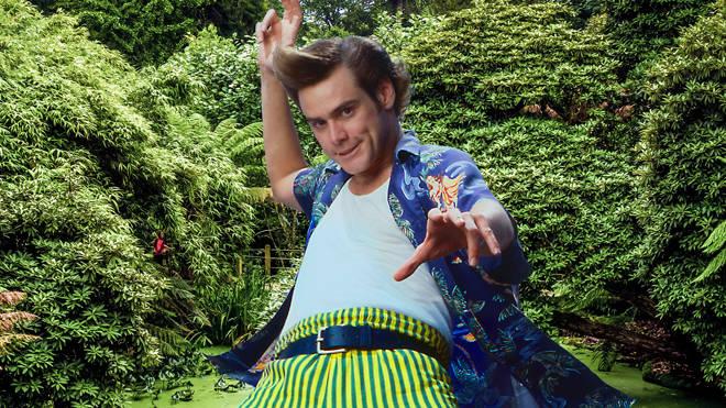 Jim Carrey as Ace Ventura, December 1995