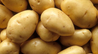 Some potatoes, yesterday