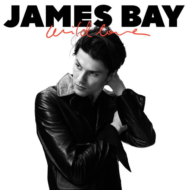 James Bay's Wild Love artwork