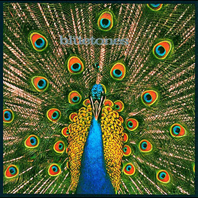 The Bluetones - Expecting To Fly album cover