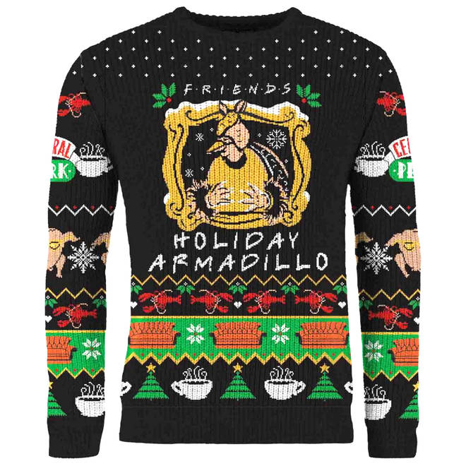 Friends: The One With The Holiday Armadillo Knitted Christmas Jumper
